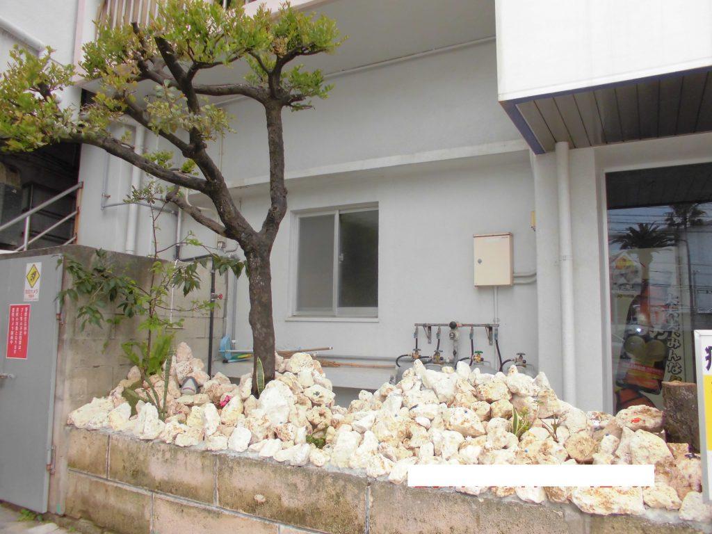 庭の琉球石灰岩アレンジメントの施工後